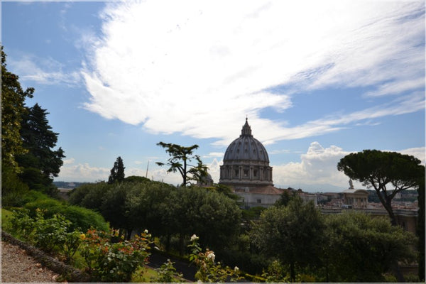 Vatican Gardens with St. Peter's Basilica on a 20 x 30 Metal Print - Schmidt Fine Art Gallery
