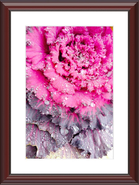 Wet and Fresh by Lowe in an 12 x 18 print Framed with mat in a Beaded Mahogany Frame - Schmidt Fine Art Gallery