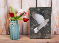 Winter Dove in a 4 x 6 Print - Schmidt Fine Art Gallery