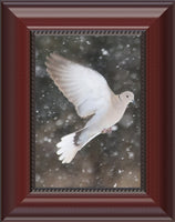Winter Dove in a 5 x 7 Print in a Beaded Mahogany Frame - Schmidt Fine Art Gallery