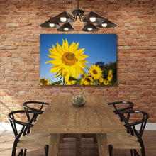 Load image into Gallery viewer, Bees on Sunflower - Prints and Wall Art