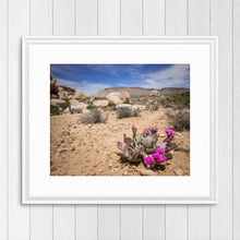 Load image into Gallery viewer, Blooming Prickly Pear Cactus - Instant Printable Download