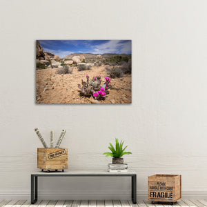 Blooming Prickly Pear Cactus - Instant Printable Download