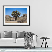 Load image into Gallery viewer, Joshua Tree - Prints and Wall Art