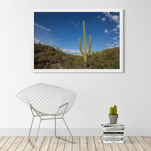 Saguaro - Instant Printable Download