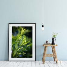 Load image into Gallery viewer, Green Leaves - Instant Printable Download