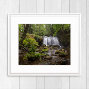 Whatcom Falls - Instant Printable Download