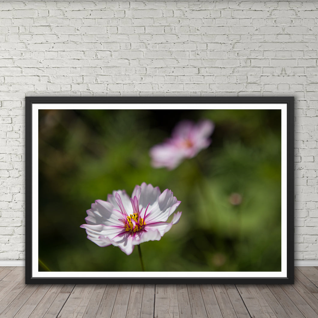 Delicate Pink Flower - Instant Printable Download