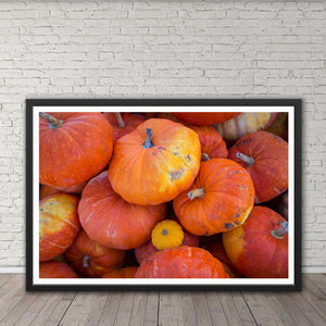 Pumpkins - Instant Printable Download