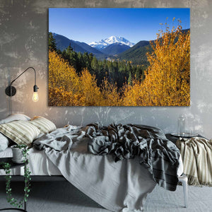 Mount Rainier - Prints and Wall Art