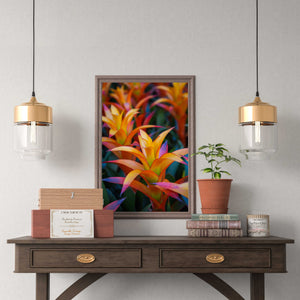 Bromeliad - Instant Printable Download