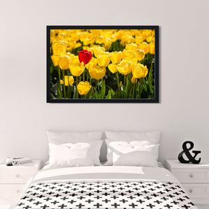Red Tulip in Yellow Tulips - Instant Printable Download