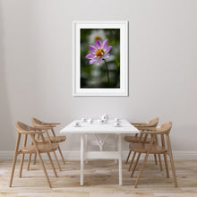 Load image into Gallery viewer, Pink Collarette Dahlia - Instant Printable Download