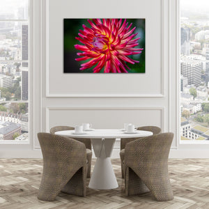 Red Cactus Dahlia - Instant Printable Download