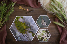 Load image into Gallery viewer, Anika Mini Collection of Hexagon Photo Prints