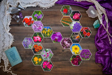 Load image into Gallery viewer, Ayaka Grand Collection of Hexagon Photo Prints
