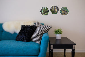 Bryn Mini Collection of Hexagon Photo Prints