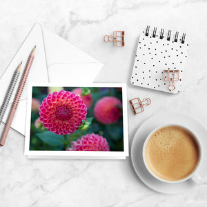 Dahlia Delights Notecards