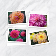 Load image into Gallery viewer, Dahlia Delights Notecards