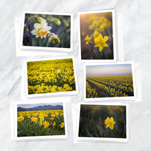 Load image into Gallery viewer, Dazzling Daffodils Notecards