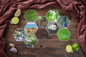 Ferne Mid Collection of Hexagon Photo Prints