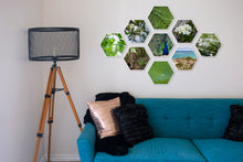 Load image into Gallery viewer, Ferne Mid Collection of Hexagon Photo Prints