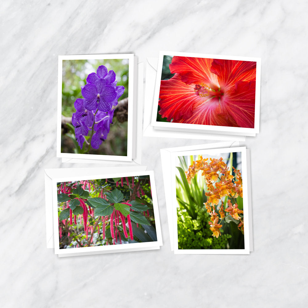 Paradise Blooms Notecards