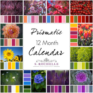 Prismatic 12 Month Calendar With Custom Start Date