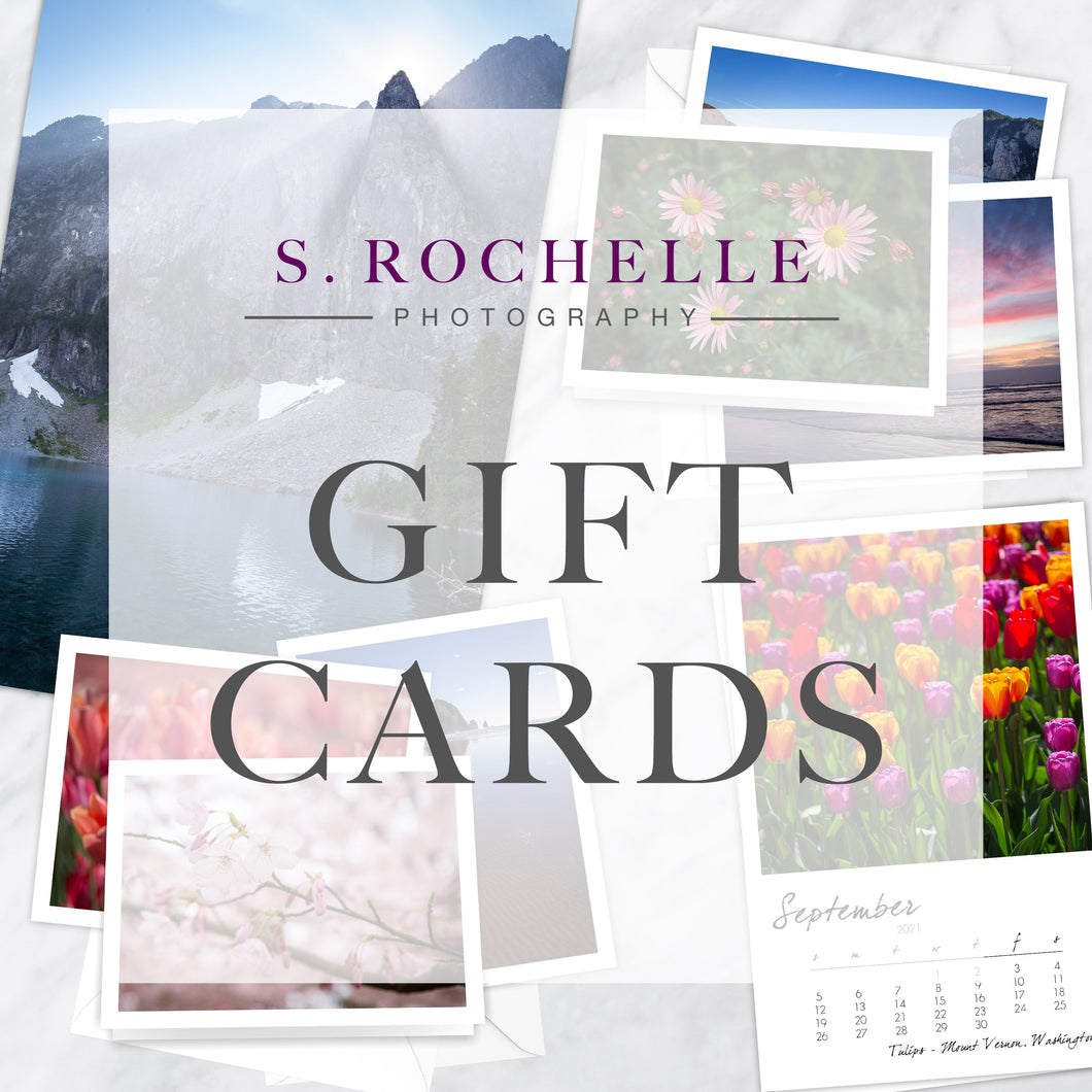 S. Rochelle Photography Gift Card