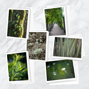 Seasons of Green Notecards