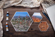 Load image into Gallery viewer, Sienna Mini Collection of Hexagon Photo Prints