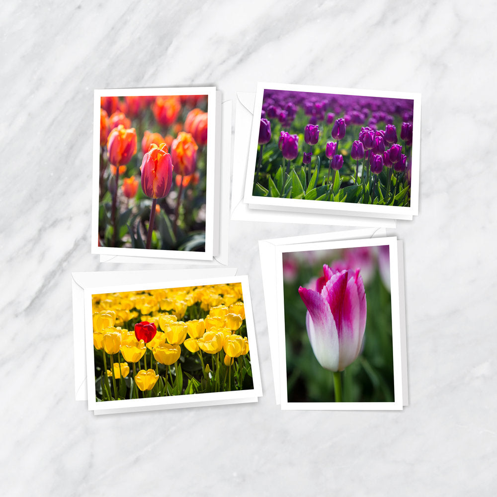 Tulip Traditions Notecards