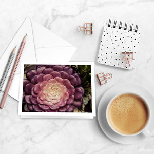 Vignettes Notecards