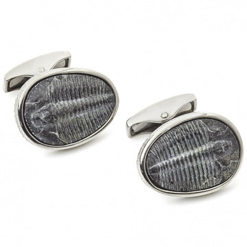 Tateossian Trilobite Fossil 500 Million Years Old Cufflinks, Limited Edition