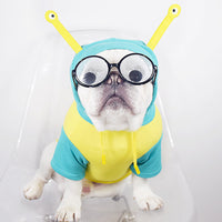Costume Escargot Bouledogue Français
