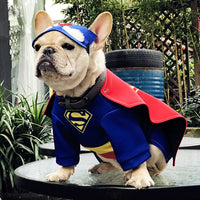 Super Heros Bouledogue Français