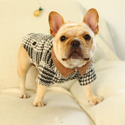 New Autumn Winter Warm Stripe Pet Dog Clothes Cute PETCIRCLE Bad Bully Dog Coat Jacket Two-Legged French Bulldog Pet Clothing