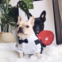 Costume Barman Bouledogue Francais