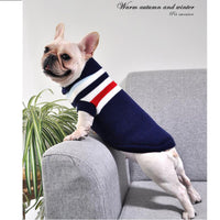 Pull Tricot Marin - Bouledogue Francais