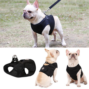 Harnais super Léger protection Dos Bouledogue Français