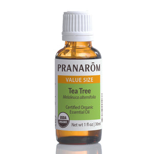 Tea Tree Essential Oil (3 Sizes)