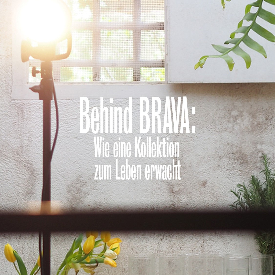 Behind BRAVA: Making our collection shine