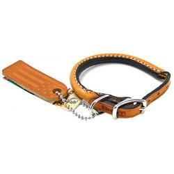Collars, Leashes & Harnesses - Leaderpetsupply.com