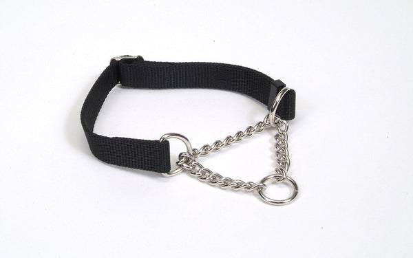 Coastal Check Training Collar for Dogs Adjustable Black 5-8X10-14in.