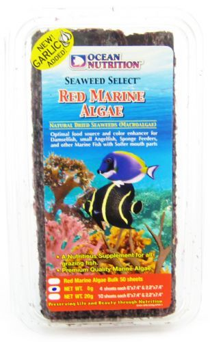 Ocean Nutrition Red Marine Algae.