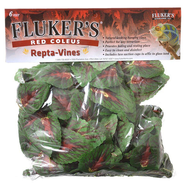 Flukers Red Coleus Repta-Vines.