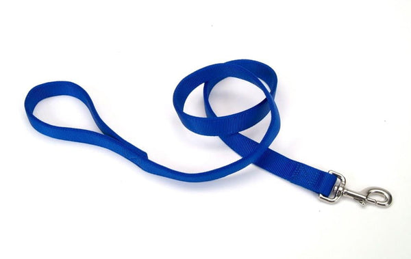 Coastal Double-Ply Nylon Leash Blue 1X4ft