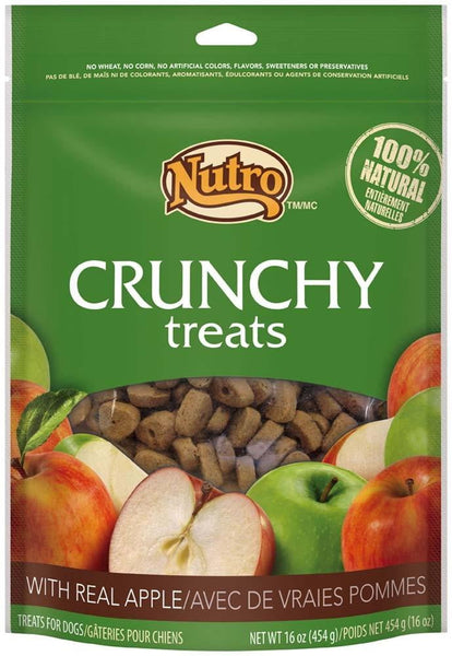NUTRO Crunchy Dog Treats with Real Apple, 16 Ounce Bag.