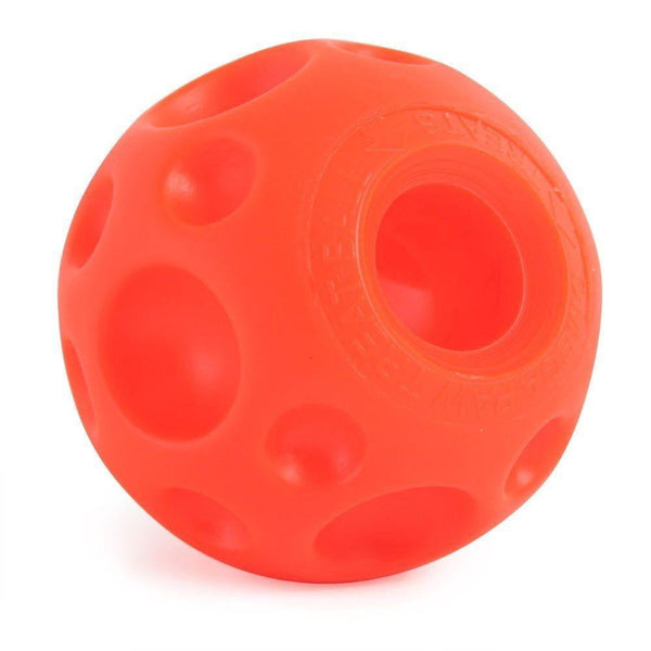 Omega Paw Tricky Treat Ball Medium.
