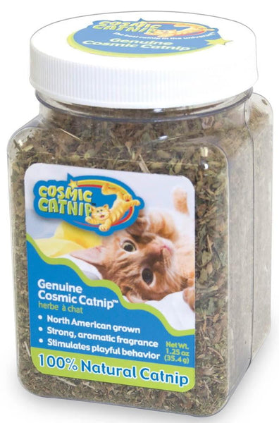 OurPet's Cosmic Catnip Jar 2.25oz.